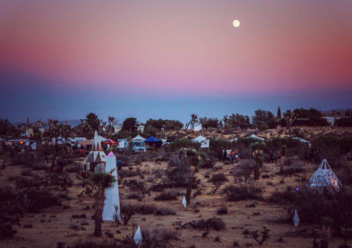 Desert Daze  - 2017